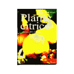 Plante Citrice pentru sere si terase