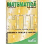 Matematica pentru clasa 3 a caiet si culegere de probleme