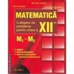 Matematica culegere de probleme pentru clasa a XII-a M1-M2(editura Erc Press, autori: Victor Nicolae, Ilie Petre Iambor, Dumitru Gheorghiu isbn: 978-973-157-032-7)