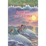 Salvati de delfini ( Editura: Paralela 45, Autor: Mary Pope Osborne ISBN 9789734720811 )