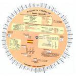 Discheta verbelor - limba spaniola ( editura: Verba, autori: Camelia Stan, Dragos Stan, 978-973-88282-4-7 )