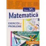 Matematica pentru clasa a VI a - exercitii si probleme ( Editura: Campion, Autor: Marius Burtea, Georgeta Burtea ISBN 978-606-8323-82-4 )