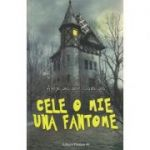 Cele o mie una fantome ( Editura: Paralela 45, Autor: Alexandre Dumas ISBN 978-973-2430-7 )