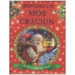 Asteptandu-l pe Mos Craciun/ O poveste magica sub stele(Editura: Flamingo isbn 978-606-8555-30-3 )