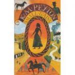 Small Gains( Editura: David Fickling Books/Books Outlet, Autor: K. M. Peyton ISBN 9780385604949 )