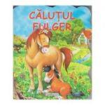Calutul Fulger (Editura: Flamingo GD ISBN 978-606-713-148-2)