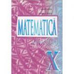 Matematica manual pentru clasa a 10 a m2 (Editura: Carminis, Autor(i): Marius Burtea, georgeta Burtea ISBN 9737826272)