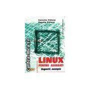 Linux pentru avansati