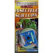 Insectele sub lupa