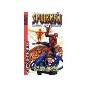 Spiderman-Spirit de echipa
