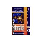 Matematica-manual cls11m1-Parsan