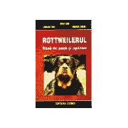 Rottweilerul - Rasa de paza si aparare