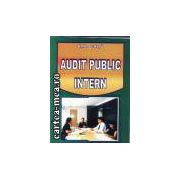 Audit public intern