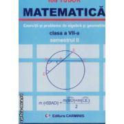 Matematica culegere clasa a VII-a semestrul II