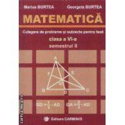 Matematica culegere clasa a VI-a semestrul II
