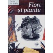 Lectia de desen-Flori si plante