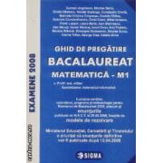 Ghid de pregatire bacalaureat matematica M1 2008 enunturi si modele de rezolvare