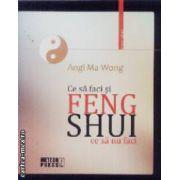 Feng Shui ce sa faci si ce sa nu faci