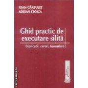Ghid practic de executare silita