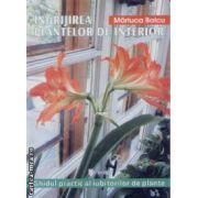 Ingrijirea plantelor de interior