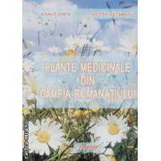 Plante medicinale din Campia Romanatiului