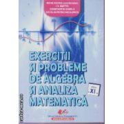 Exercitii si probleme de algebra si analiza matematica clasa a XI a