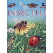 Insectele