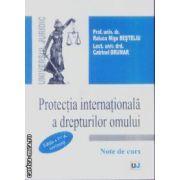 Protectia internationala a drepturilor omului