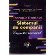 Economia Romaniei Sistemul de companii