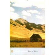 East of Eden(editura Longman, autor:John Steinbeck isbn:978-0-14-118507-1)