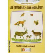 Vietuitoate din Romania carte de colorat
