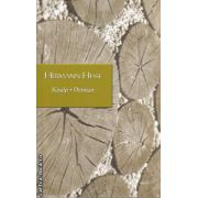 Knulp Demian(editura Rao, autor: Hermann Hesse isbn: 978-973-103-036-4)