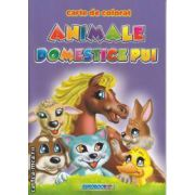 Animale Domestice Pui