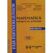 Matematica culegere de probleme pentru clasa a X-s M1