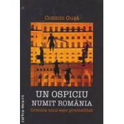 Un ospiciu numit Romania Cronica unui esec premeditat