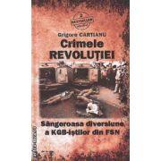 Crimele Revolutiei Sangeroasa diversiune a KGB-istilor din FSN