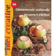 Idei creative Ornamente naturale pentru Craciun nr.50