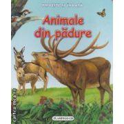 Priveste si invata Animale din padure