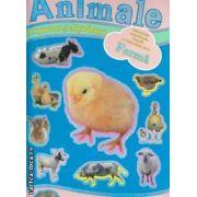 Animale de la ferma cu jocuri si abtibilduri