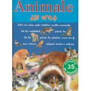 Animale din oras cu abtibilduri