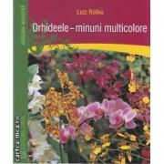 Orhideele-minuni multicolore