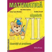 Matematica algebra exercitii si probleme clasa a VII-a(editura Erc Press, autor: Ilie Petre Iambor, Aneliss Huszti, Victor Ioan Nicolae isbn: 978-973-157-901-6)