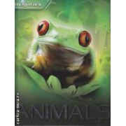 Animals (editura Macmillan, autor: Miranda Smith isbn: 978-0-7534-1801-7)