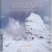 Bucegii, intre Kogainon si Sahashrara ( editura: Art, autor: Dan Anghelescu, George Avanu ISBN 978-973-88353-4-4 )