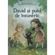 David si puiul de intuneric ( Editura: Benefica, Autor: Maria Surducan, ISBN: 978-606-92754-1-2 )