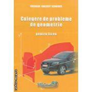 Culegere de probleme de geometrie pentru liceu ( editura : Hyperion , autor : Gheorghe Adalbert Schneider ISBN 978-973-9395-79-3 )