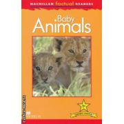 Macmillan factual Readers: Baby Animals: Level 1+ ( editura: Macmillan, autor: Thea Feldman ISBN 978-0-230-43203-1 )