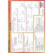 Plansa cu - Formule de calcul si valori ale constantelor utilizate in probleme de fizica - Legile gazelor si Termodinamica ( editura : Didactica si Pedagogica , autor : Izabella Tilea , ISBN 978-973-30-3341-7 )