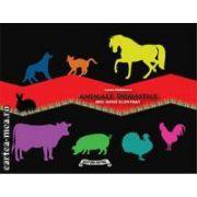 Animale domestice - Mic ghid ilustrat ( editura : Astro ,  autor : Radulescu Laura , ISBN 978-606-8148-43-4 )