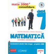Matematica 2000 consolidare : Algebra , Geometrie : clasa a VII - a , Partea I ( editura : Paralela 45 , coord . Radu Gologan ISBN 978-973-47-1715-6 )